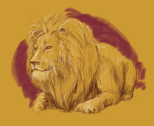 lion2-72